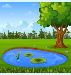beautiful nature with water pond vector image