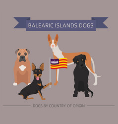 dogs by country of origin spain balearic islands vector image