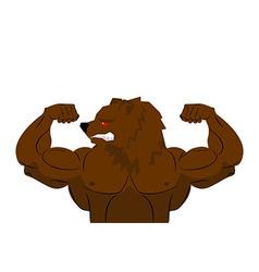 Aggressive strong Bear Bear athlete Angry animal vector image vector image