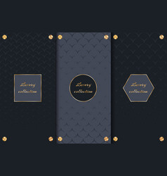 collection of backgrounds for luxury goods vector image vector image