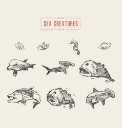 set realistic sea creatures drawn sketch vector image