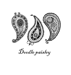 Three doodle paisley elements vector image vector image