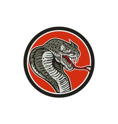 Cobra Viper Snake Circle Retro vector image