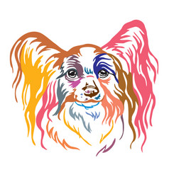 Colorful decorative portrait of papillon dog vector