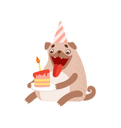 Cute pug dog in party hat with birthday cake vector
