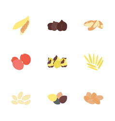 dried fruits flat icons set vector image