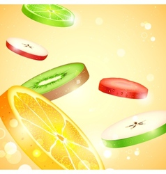 Fresh Fruit Slices vector image