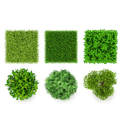 green ground top view eco concept pieces grass vector image