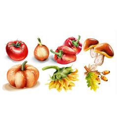 pumpkin mushrooms and vegetables watercolor vector image