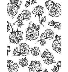 rain of rose flower sketch engraving style vector image