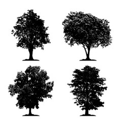 silhouette tree set isolated black forest vector image