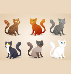 Set of cute cartoon cats with different colored vector image vector image