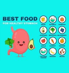 best food for strong stomachstrong vector image vector image