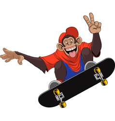Funny monkey skateboarder vector image