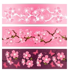 Cherry blossom flowers banner set vector image