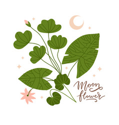 branch with leaves lotus flower and moon crescent vector image