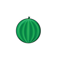 Flat sketch style fresh ripe watermelon vector