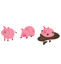 isolated pig on white background vector image vector image
