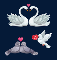 Loving bird couples with hearts valentines day vector