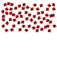 Maple leaf fall vector