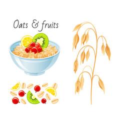 oat meal fruit berry set bowl oatmeal ear flake vector image