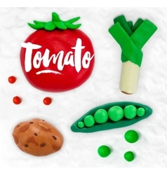 Plasticine vegetables tomato vector image