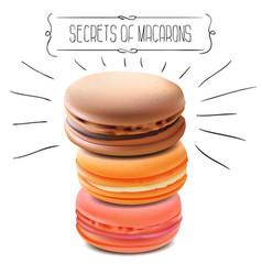 secrets macarons vector image