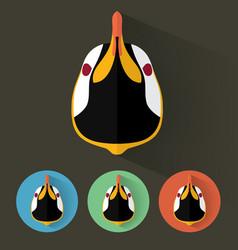 penguin portrait with flat design vector image vector image