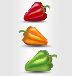 Pepper isolated green yellow and red vector