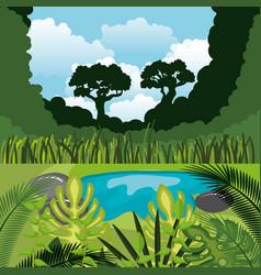rainforest jungle natural scene vector image