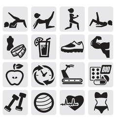 fitness and sport set vector image vector image