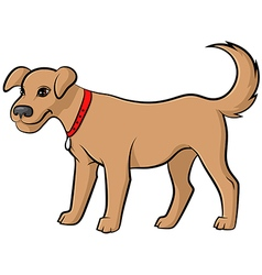 dog pale vector image vector image
