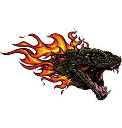 A head of the dragon in fire with flames vector