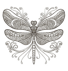 Dragonfly coloring vector