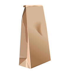 Paper brown bag 3d realistic isolated icon vector