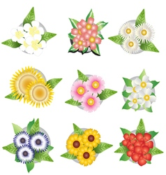 Plants and flower top view for interior vector