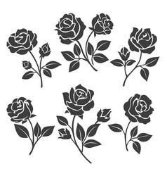 rose silhouettes decorative set vector image