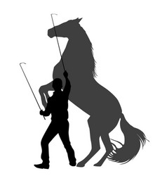 silhouette of a man training horse to rear up vector image
