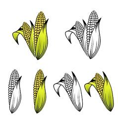 Corn collection vector