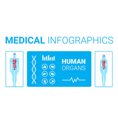 human body structure medical infographic poster vector image