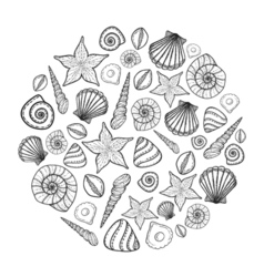 Poster with seashells and starfishes Marine vector