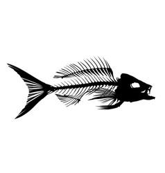 Skeleton of fish vector