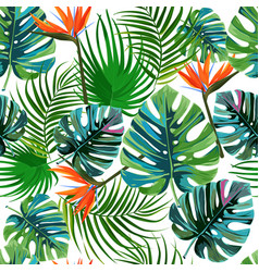 Tropical dark green leaves of palm trees vector
