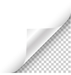 white page curled corner with shadow on vector image