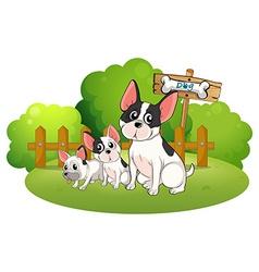 A backyard with three bulldogs vector image vector image