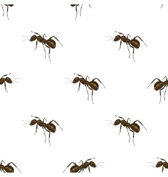 Ant isolated on white background vector