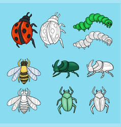 Set insects cartoon cute vector