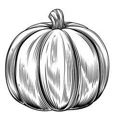 vintage retro woodcut pumpkin vector image