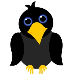 Black crow vector