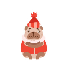 cute pug dog in warm clothes funny friendly vector image